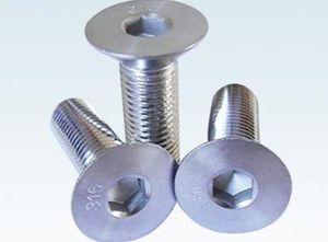 ISO M16*30 Titanium Screws Customized